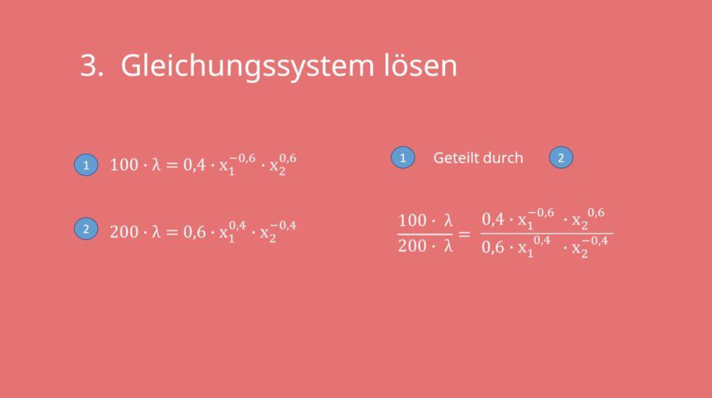 Lagrange. Lagrange-Prinzip, Gleichungssystem