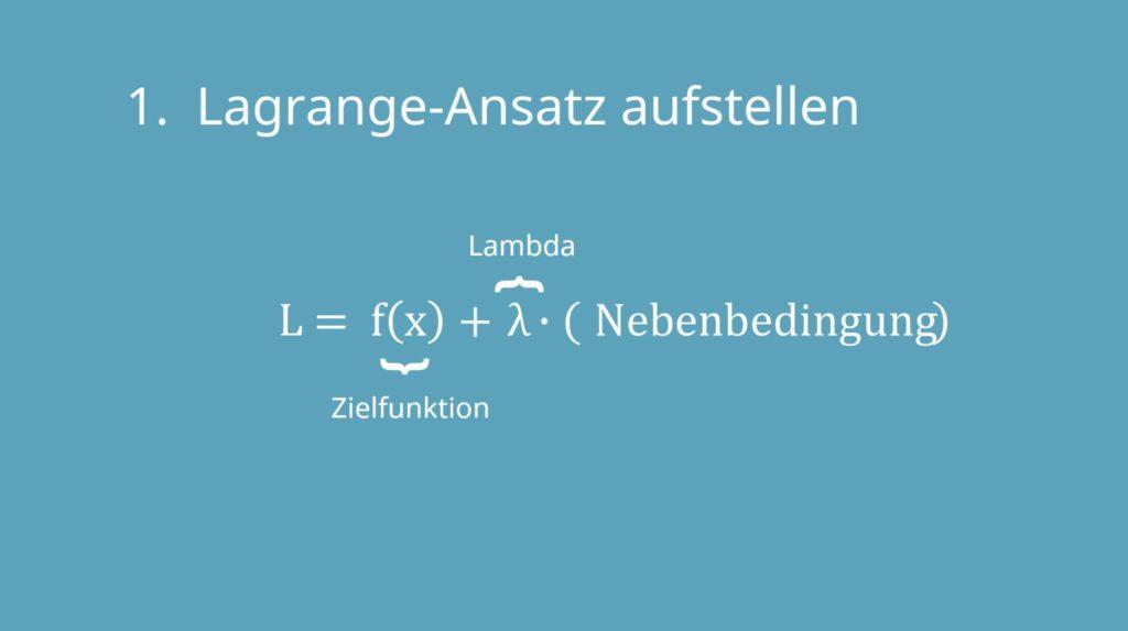 Lagrange, Lagrange-Prinzip, Lagrange-Multiplikator