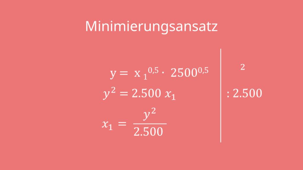Minimierungsansatz