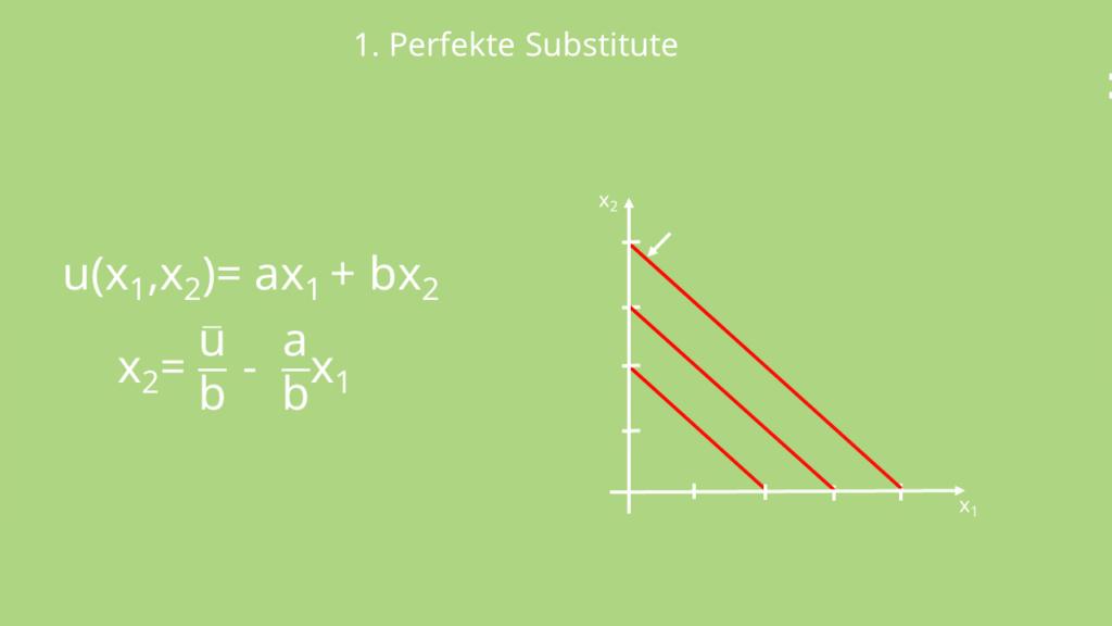 Perfekte Substitute, Nutzenfunktion, Mikroökonomie