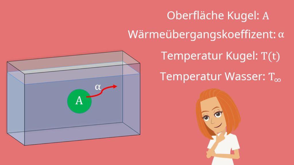 instationre wrmeleitung beispiel temperaturverlauf - Warmeleitung Beispiele