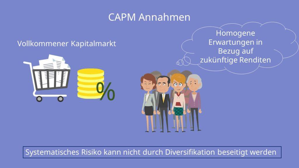 CAPM Annahmen, Capital Asset Pricing Modell
