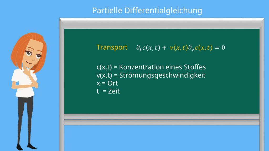 Partielle Differentialgleichung, Partielle DGL, Partielle DGL Beispiel