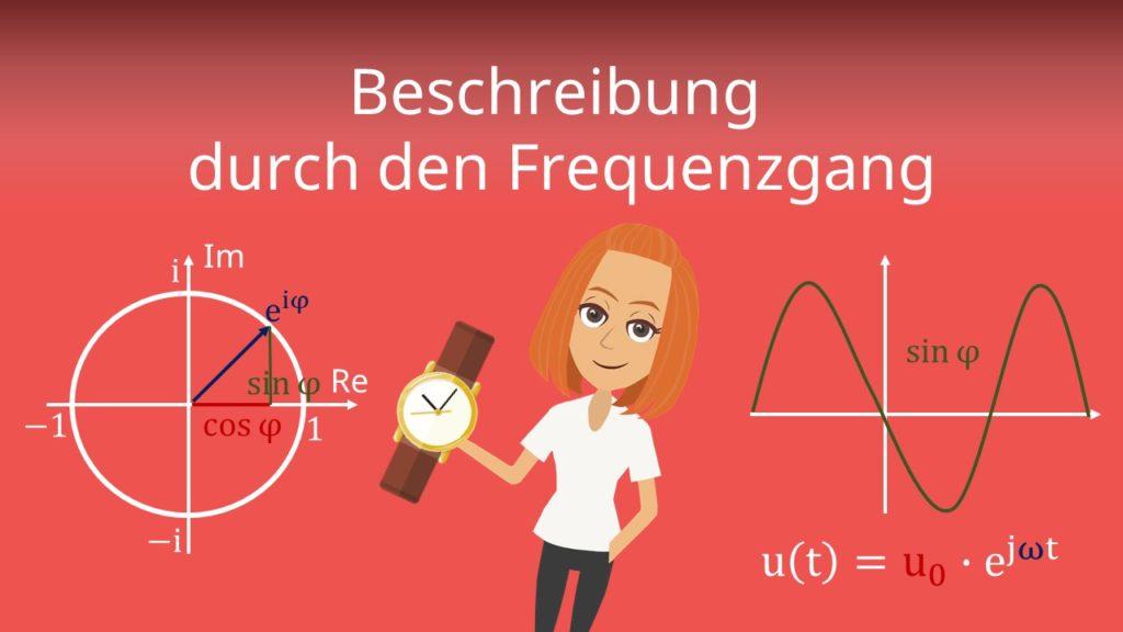 Beschreibung Frequenzgang