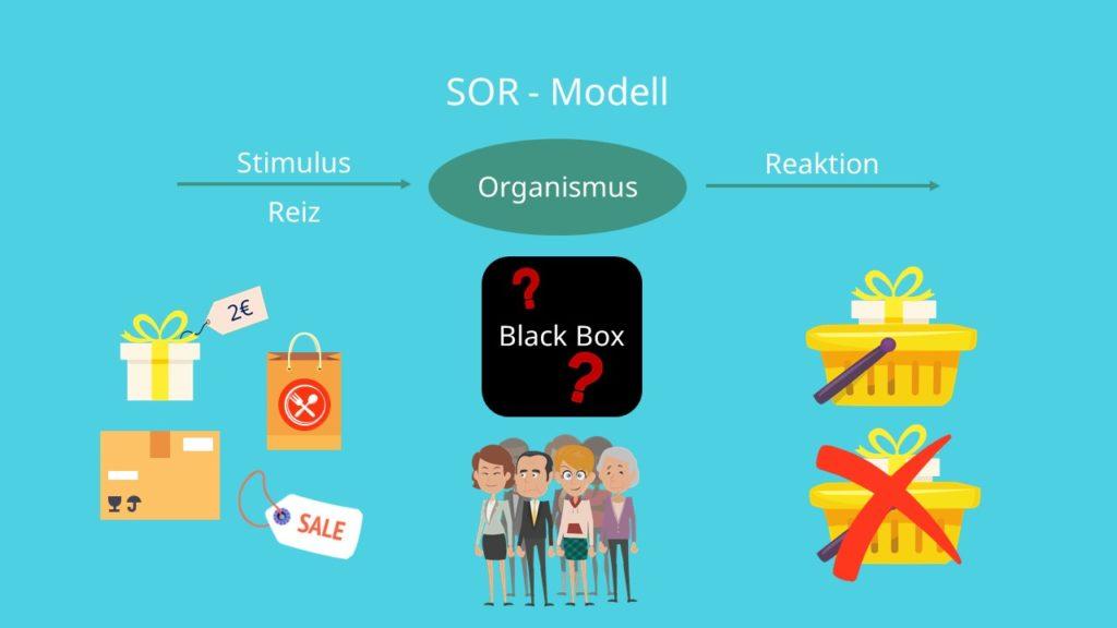 SOR-Modell, Stimulus Organismus, Black Box Reaktion
