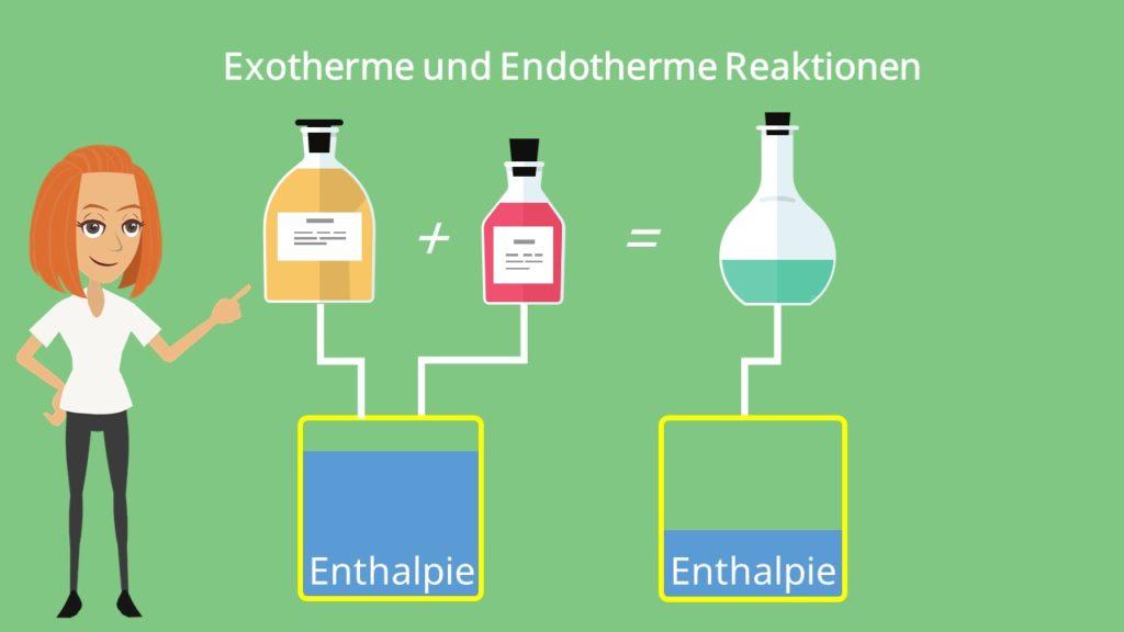 Exotherm und Endotherm