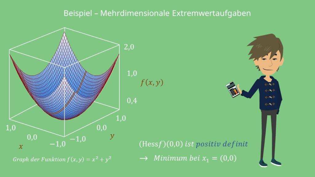 Extremwertaufgaben: Graph der mehrdimensionalen Funktion