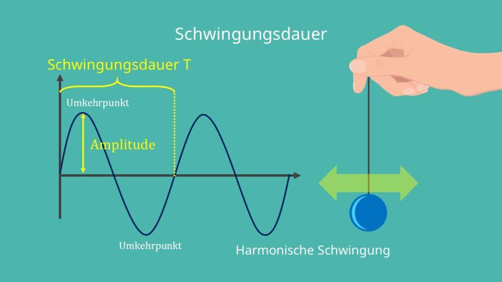 Amplitude, Schwingung, Schwingungsdauer, Umkehrpunkt, harmonische Schwingung, Sinusschwingung