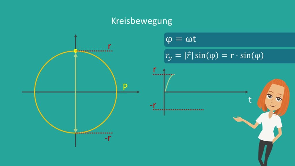 Harmonische Schwingung, Radius, Schwingung, Sinusschwingung, Oszillator, Winkelgeschwindigkeit, Zeit, Amplitude