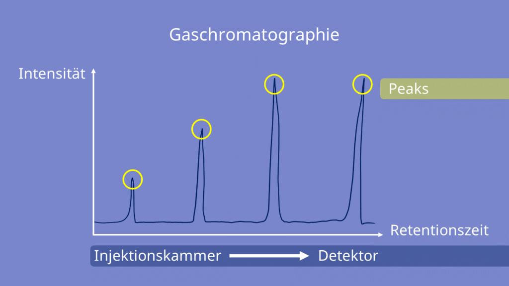 Peaks, Gaschromatographie