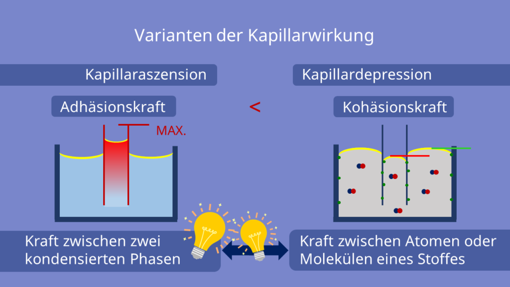 Varianten der Kapillarwirkung, Kapillaraszension, Kapillardepression, Adhäsionskraft, Kohäsionskraft