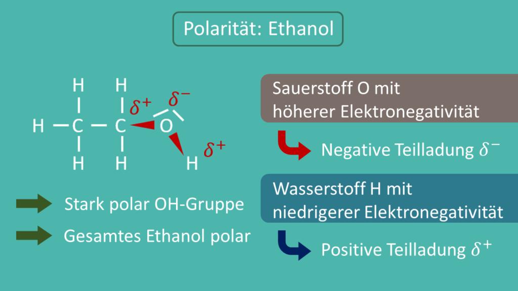 Polarität Ethanol, Polarität, polar