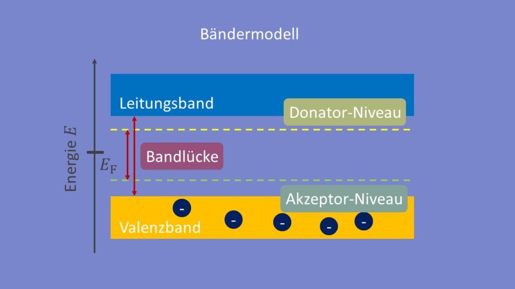 Bänderschema illustriert