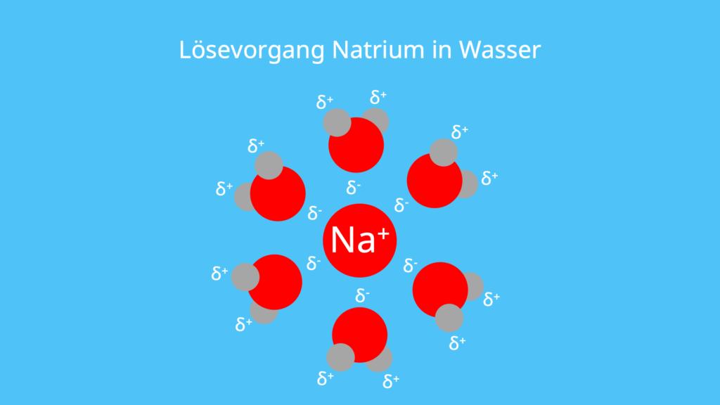 Wasser, Natrium, Hydratation, Hydrathülle, Lösen, Salze