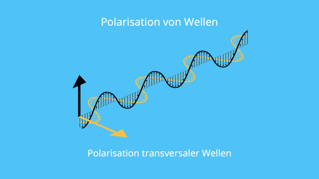 Polarisation von Wellen
