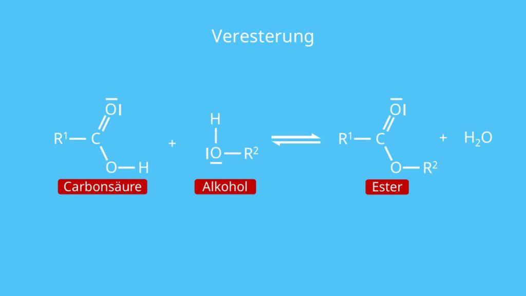 Veresterung, Carbonsäure, Alkohol, Ester