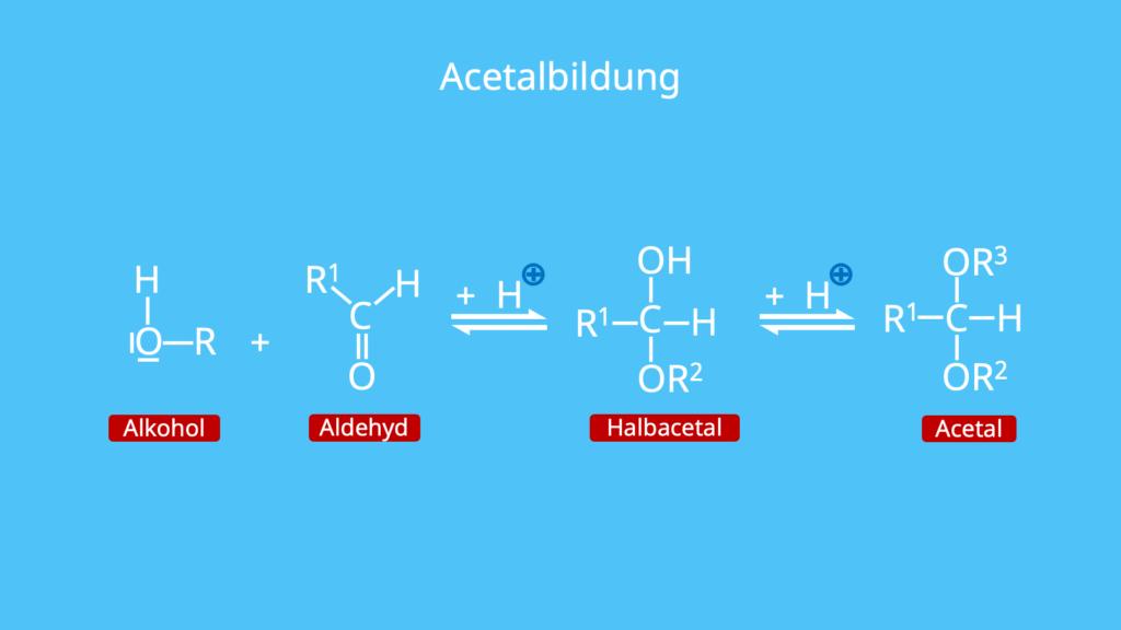 Acetalbildung, Alkohol, Alkohole, Aldehyd, Halbacetal, Acetal