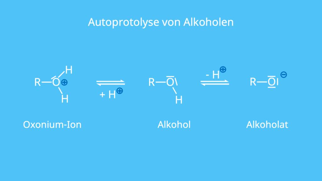 Autoprotolyse, Alkohol, Eigendissoziation, Protolyse, Alkoholat, Alkohole, Alkohol