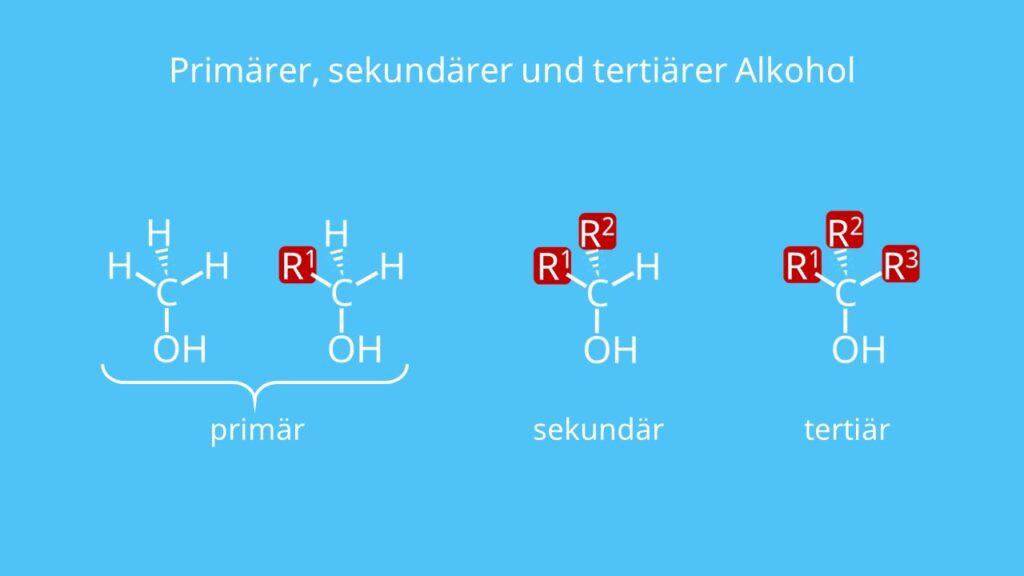 primärer Alkohol, sekundärer Alkohol, tertiärer Alkohol, Alkohole