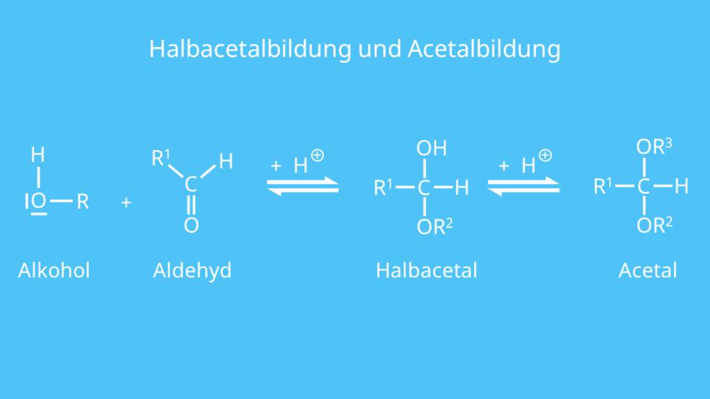 Aldehyd, Acetal, Acetalbildung, Halbacetal, Halbacetalbildung, Alkoho