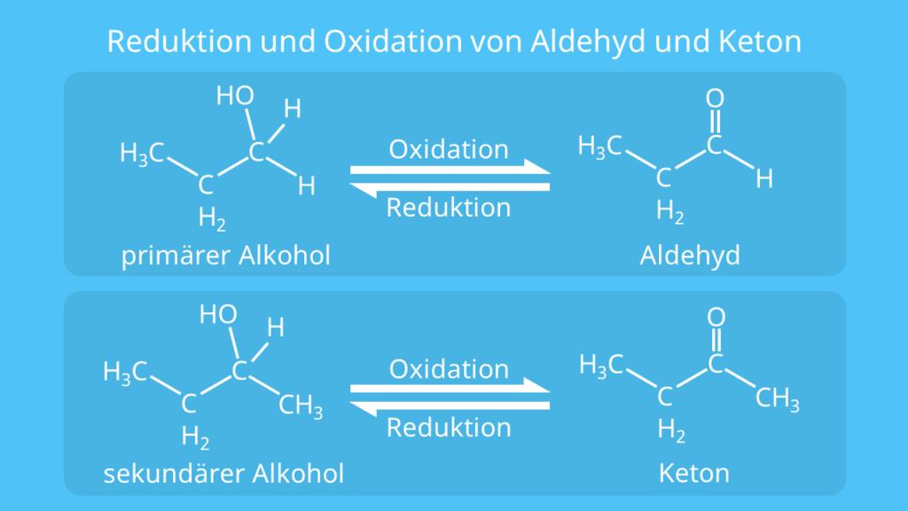 Reduktion und Oxidation von Aldehyd und Keton, Oxidation, Carbonylgruppe, primärer Alkohol, sekundärer Alkohol