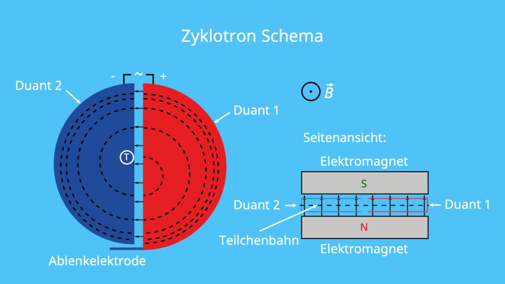 Zyklotron, Duanten, Aufbau, Schema