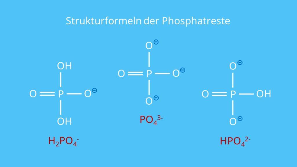 Strukturformeln der Phosphatreste, RNA, DNA, Phosphorsäurerest, Phosphatgruppe, Nukleotid