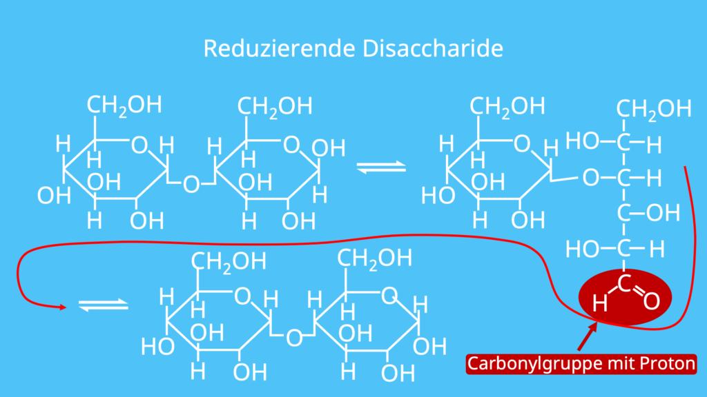 reduzierende Disaccharide