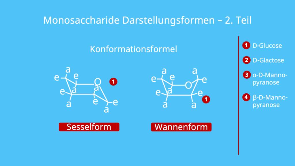 Monosaccharide Darstellung, Darstellungsformen, Fischer Projektion, Haworth Darstellung, Konformationsformel