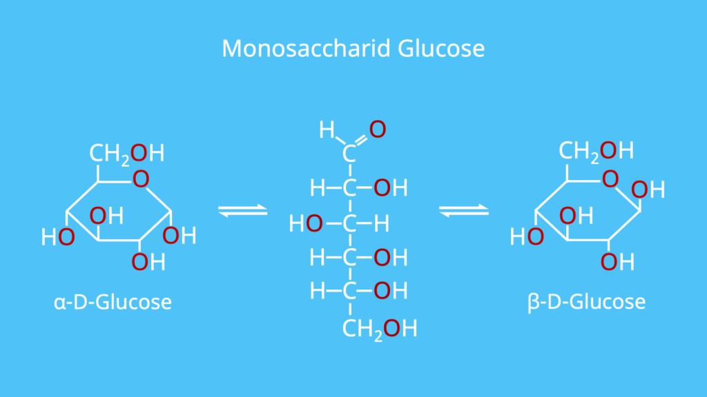 Monosaccharid, Monosaccharide, Glucose, Beispiel, Beispiele