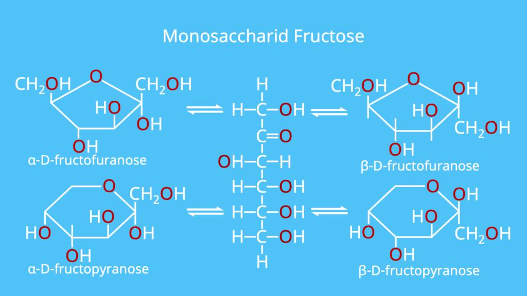Monosaccharid, Monosaccharide, Fructose, Beispiel, Beispiele