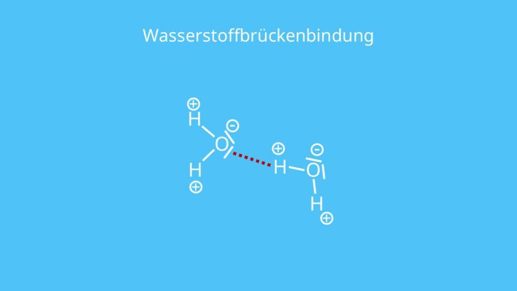 Wasserstoffbrückenbindung, Wasserstoffbrücke, H-Brücke, zwischenmolekulare Kräfte, intermolekulare Kräfte