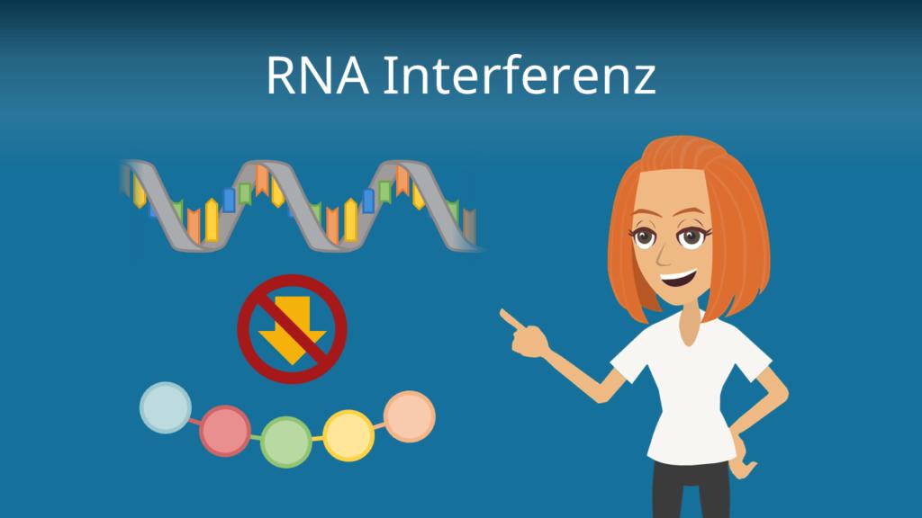 Zum Video: RNA Interferenz