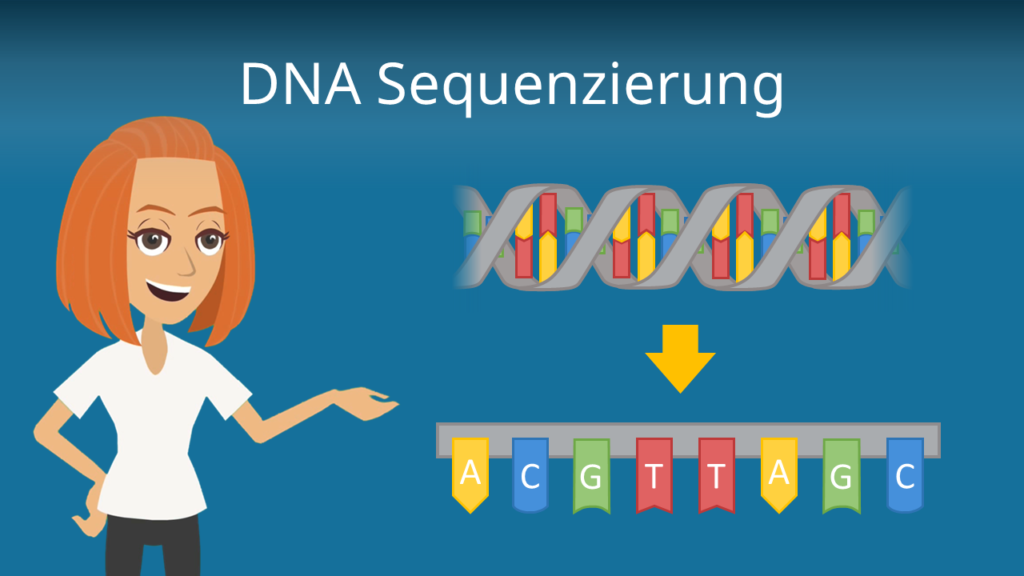 Zum Video: DNA Sequenzierung