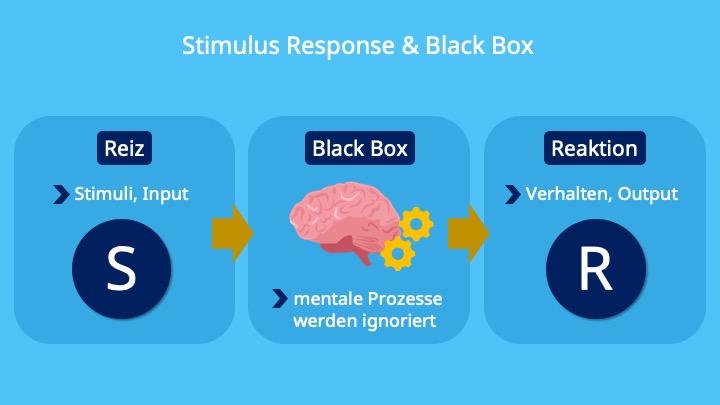 Stimulus Response Modell, Black Box Modell, Behaviorismus, Input, Output, Reiz, Stimulus, Stimuli, Reaktion, Verhalten, Introspektion