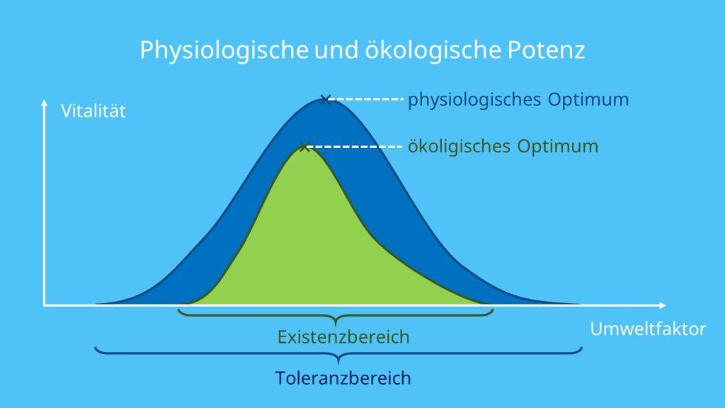Optimum, Präferendum, Pessimum, Pessima, Minimum, Maximum, Randbereiche, Toleranzbereich, Toleranzkurven, Ökologie