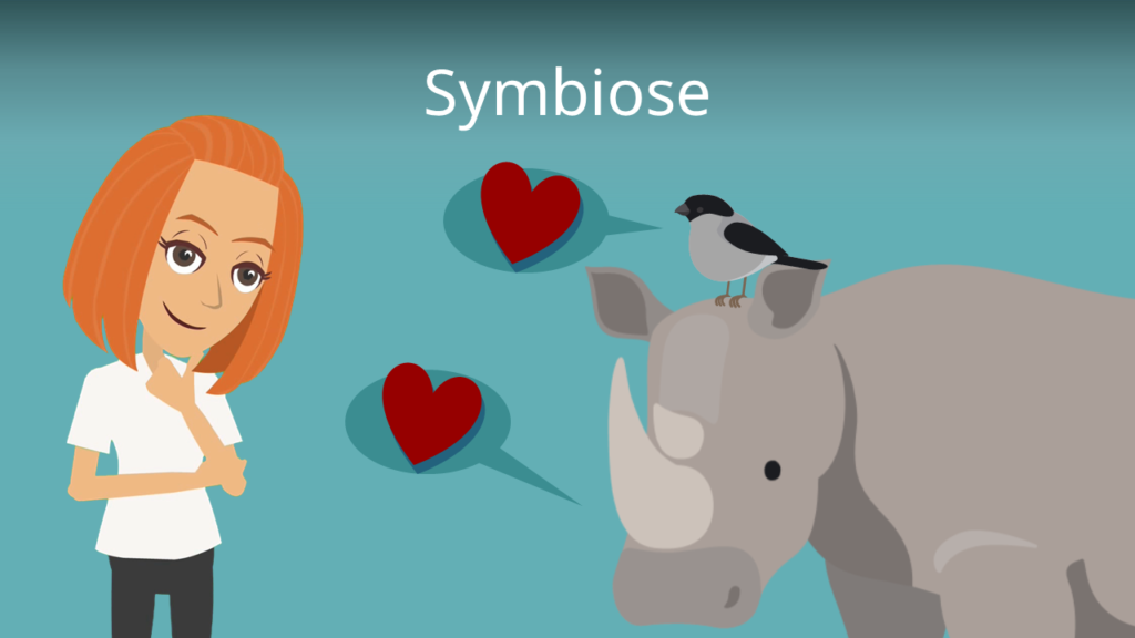 Zum Video: Symbiose