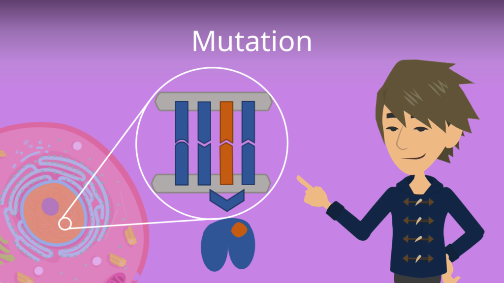 Zum Video: Mutation