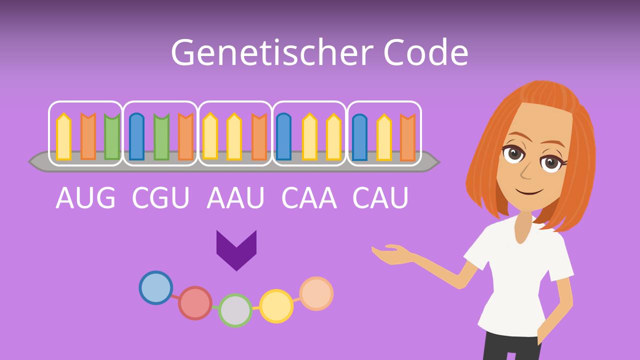 Zum Video: Genetischer Code