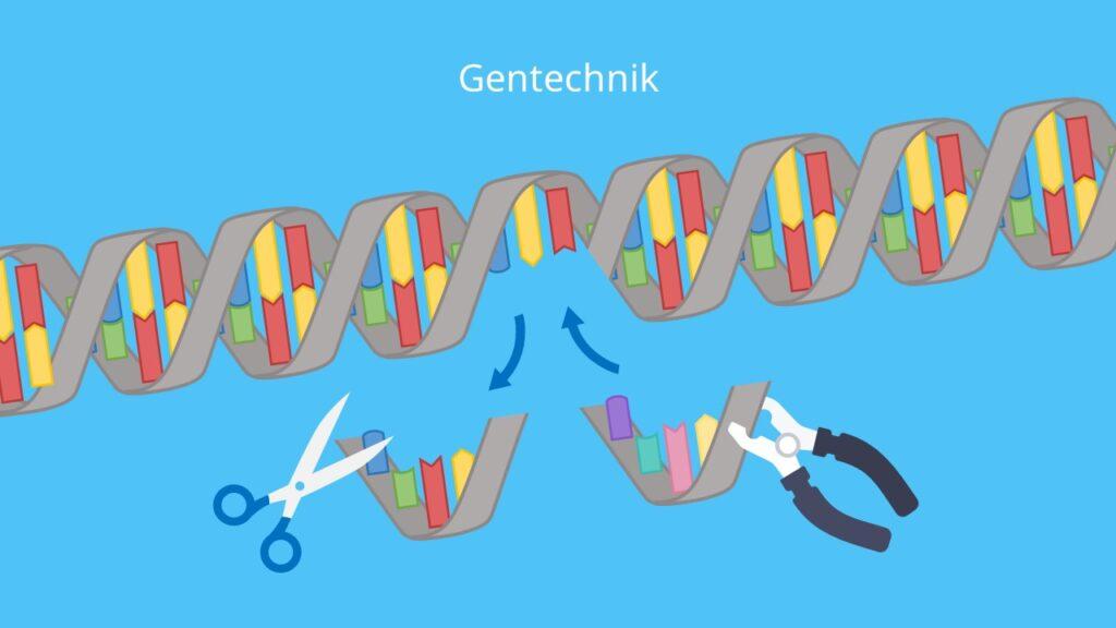 DNA, Genome Editing, Gentechnik