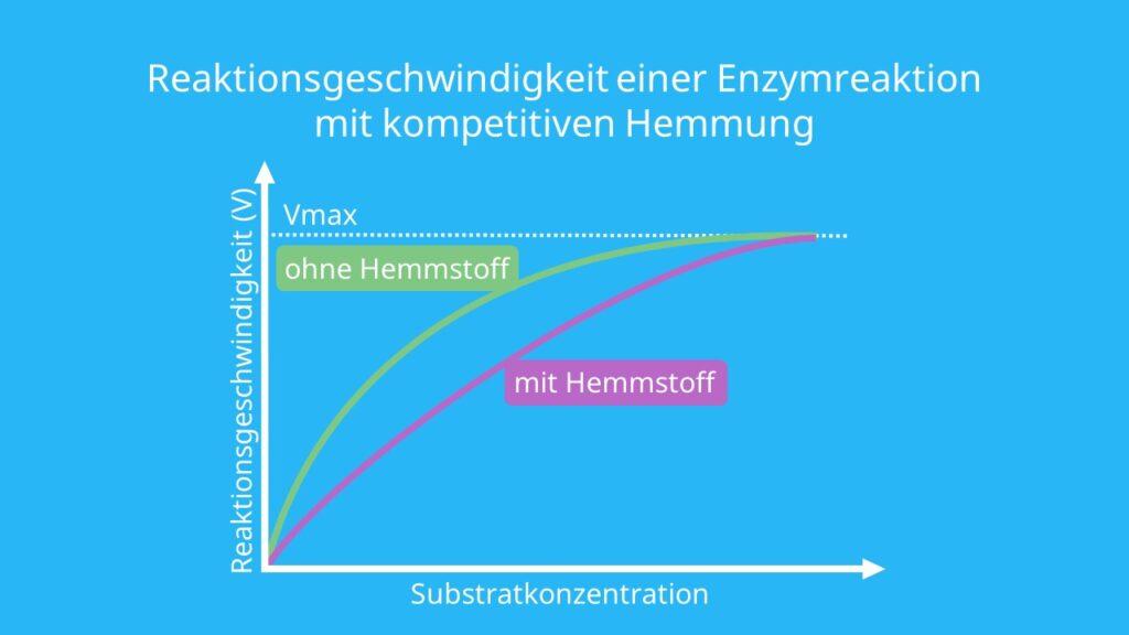 Enzym, kompetitive Hemmung Enzyme, isosterisch, reversibel