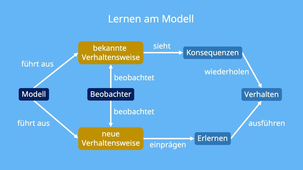 Lernen Am Modell Modelllernen Albert Bandura 7