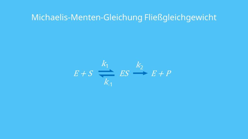Michaelis-Menten-Gleichung Fließgleichgewicht, Michaelis-Menten-Gleichung, Enzym-Substrat-Komplex, Geschwindigkeitskonstante, Dissoziationskonstante