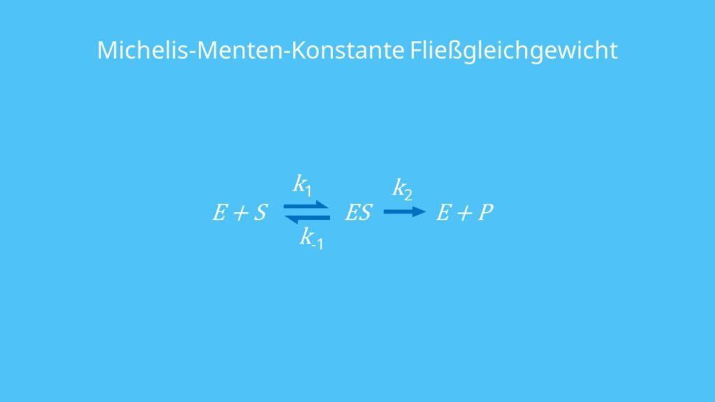 Michaelis-Menten-Konstante Fließgleichgewicht, Michaelis-Menten-Gleichung, Enzym-Substrat-Komplex, Geschwindigkeitskonstante, Dissoziationskonstante