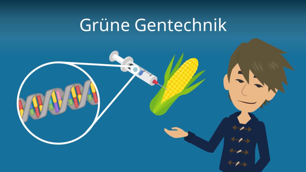 Zum Video: Grüne Gentechnik