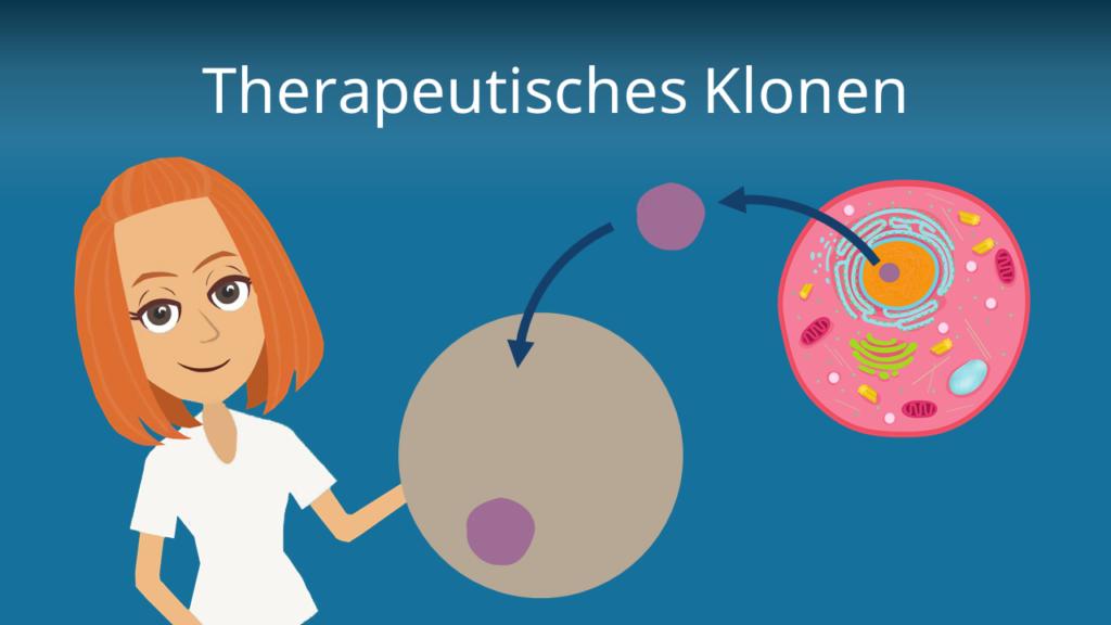 Zum Video: Therapeutisches Klonen