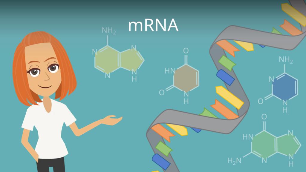 Zum Video: mRNA