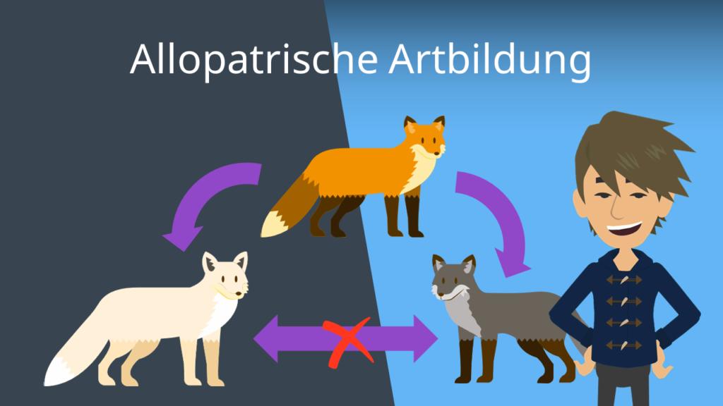 Zum Video: Allopatrische Artbildung