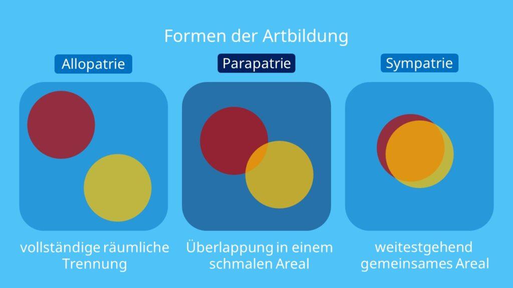 Formen der Artbildung, parapatrische Artbildung, Beispiel, Artbildung, Artentstehung, Art biologie, Evolution