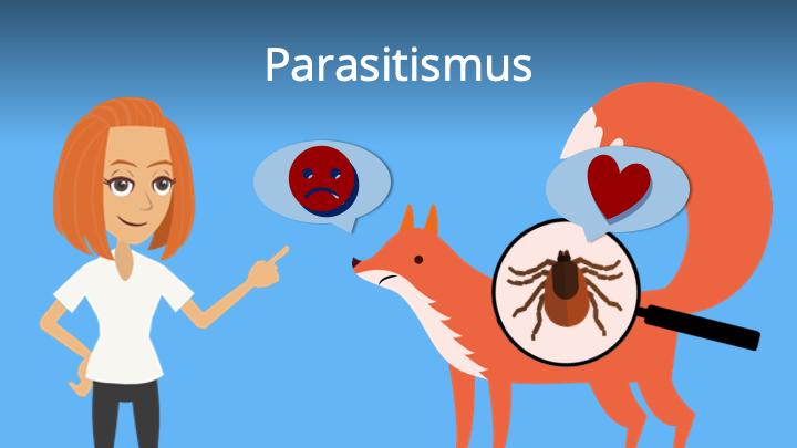 Zum Video: Parasitismus